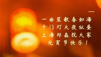 上海邦森祝大家元宵节快乐