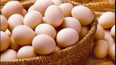 上海邦森分析蛋壳质量下降的六大原因