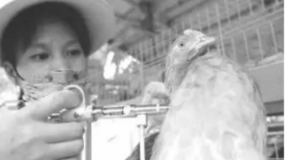 上海邦森分享接种疫苗还发病的原因