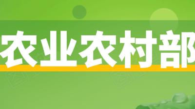 上海邦森分享农业农村部发布《关于加快生猪种业高质量发展的通知》