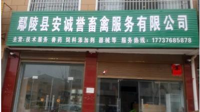 上海邦森蛋鸡论坛走进花都鄢陵