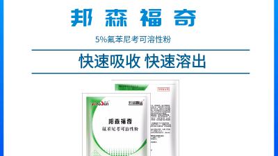 上海邦森兽药知识--怎样用氟苯尼考才能把它的临床治疗价值最大化?