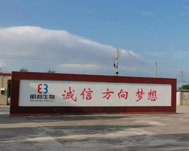 上海明磊邦森